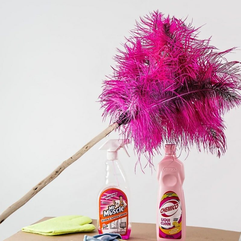 feather-duster-51e0dc4248_1280